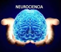 psicologia y neurociencias